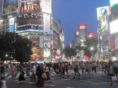 14 Shibuya Crossing
