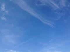 今朝、午前7時頃の空 (本文とは直接関係ありません)