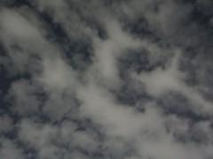 最後は雲に隠れてしまった