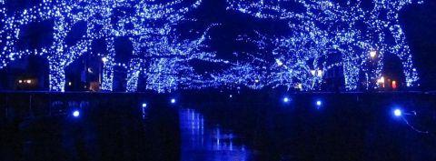 目黒川に「青の洞窟」