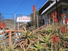 ふたたび今井浜海岸駅