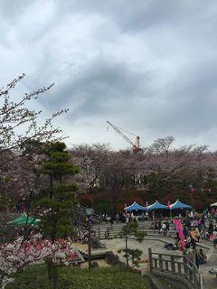 名所江戸百景「飛鳥山北の眺望」の今