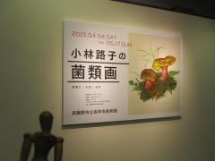 「小林路子の菌類画…きのこ・イロ・イロ」展