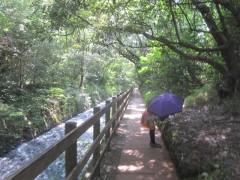 川沿いを歩く