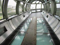 海上47mの丸木橋