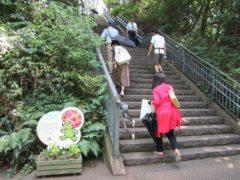 港の見える丘公園は階段を上がる…
