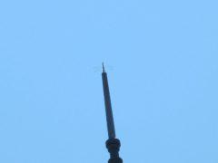 避雷針の上にトンボ