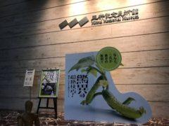 三井記念美術館にて
