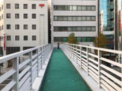 歩道橋の先客