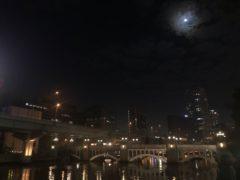 堂島川へやってきた