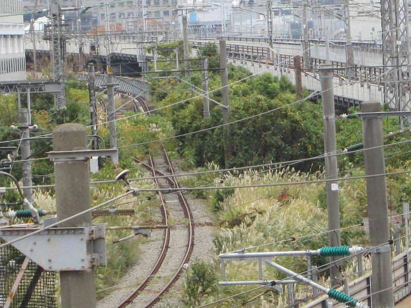 ここを列車が行きかうようになる…