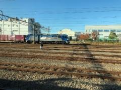 貨物列車がたくさん