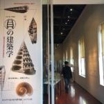 貝の建築学