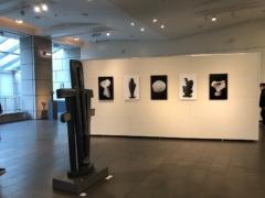彫刻と写真が展示
