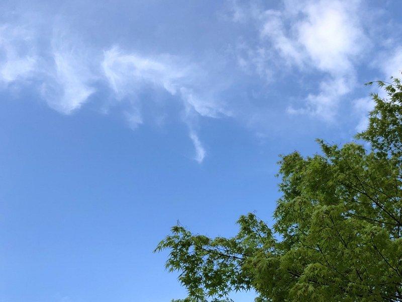 今日はいい天気だった